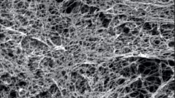 Lesioni spinali: sviluppati biomateriali per curarle